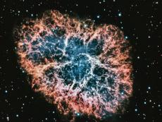 Crab Nebula by Rune Matthijssens